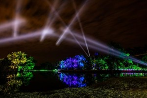 Elation illuminates NightGarden at Fairchild Tropical Botanic Garden