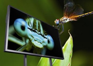 Neues Ultra HD-Display von Eyevis