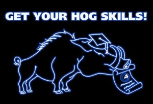 """Hog 4 You""-Workshop im Juli"